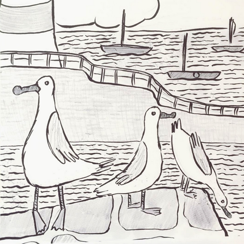 Seagulls of Lynmouth